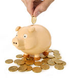 l'épargne porcine australienne de monnaie de banque Photos libres de droits