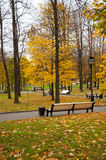 A l park with benches in the autumn Stock Image
