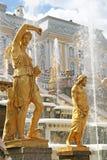 L'or a plaqué des sculptures par la cascade grande de fontaines dans Pertergof, St Petersburg, Russie images stock