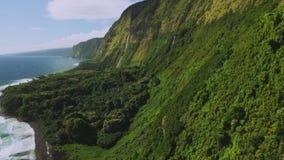 L sikt av den härliga vattenfallet på den norr kusten av Kauai, Hawaii lager videofilmer