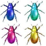 L?st kryp f?r exotiska skalbaggar stock illustrationer