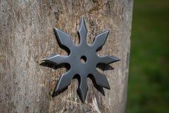 L'?toile de lancement de Shuriken, arme froide de ninja japonais traditionnel a coll? ? l'arri?re-plan en bois photos stock