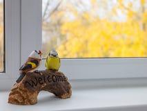 L'uccello che si siede sul piatto è benvenuto Immagine Stock Libera da Diritti