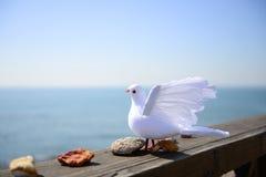 L'uccello e le pietre Fotografia Stock Libera da Diritti