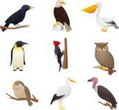 L'uccello ha messo 2 illustrazione vettoriale