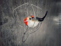 L'uccello non vuole mai una gabbia fotografie stock