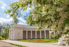 L'UCRAINA, BELAYA TSERKOV: Echo Colonnade nell'arboreto di Alessandria d'Egitto immagine stock libera da diritti