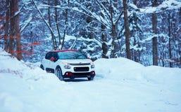 L'UCRAINA - 10 GENNAIO 2019: L'automobile di Citroen C3 sta passando la strada nevosa attraverso la foresta dell'inverno fotografia stock
