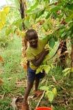 L'Uganda orientale Fotografia Stock Libera da Diritti