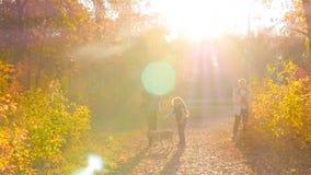 """l'Ukraine, Kiev 10 10 Amitié du parc 18 la """"du mari d'A des peuples, l'épouse et l'enfant sont photographiés en parc d'automne av banque de vidéos"""
