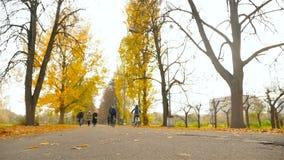 l'Ukraine, Kiev Parc VDNH 10 27 18 deux cyclistes montent par le parc d'automne Gens de marche Mouvement lent clips vidéos