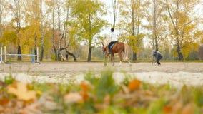 l'Ukraine, Kiev VDNH 10 27 18 les trains de fille pour monter un cheval Mouvement lent clips vidéos