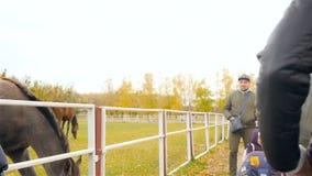 l'Ukraine, Kiev VDNH 10 27 18 père et enfants alimentent le cheval Mouvement lent banque de vidéos