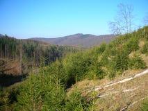l'ukraine Montagnes carpathiennes Images stock
