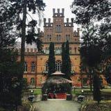 L'Ukraine, université, forêt Image libre de droits