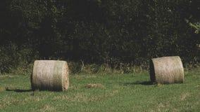 L'ultima balla di paglia prima dell'autunno fotografia stock libera da diritti