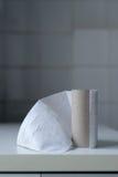 L'ultimo strato della carta igienica Fotografia Stock