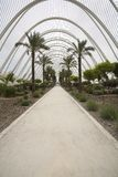 L Umbracle Garden Stock Photography