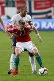 L'Ungheria contro i Paesi Bassi Partita 2016 di calcio della partita di spareggio del qualificatore dell'euro dell'UEFA della Nor Immagini Stock Libere da Diritti