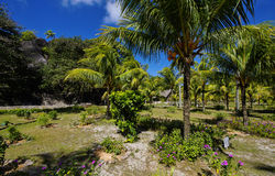L'Union Estate, La Digue, Seychelles islands Stock Image