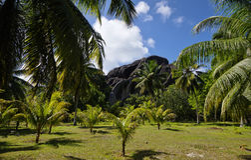 L'Unionlandgoed, La Digue, de eilanden van Seychellen Stock Foto's