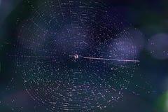 L'univers en expansion Image stock