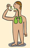 L'uomo è medicina applicata dello spruzzo nei polmoni Fotografie Stock