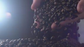 L'uomo adulto passa i chicchi di caffè di versamento in primo piano dei movimenti lenti video d archivio