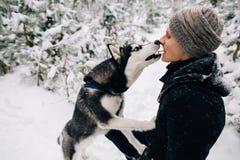 L'uomo alimenta i suoi biscotti per cani del husky da bocca a bocca fotografia stock libera da diritti