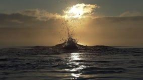 L'uomo allegro nuota la farfalla in un lago al tramonto nel slo-Mo video d archivio