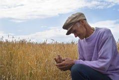 L'uomo anziano circa il campo Fotografie Stock Libere da Diritti