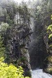 L'uomo anziano del legno e delle cascate sulle alpi italiane Fotografia Stock Libera da Diritti