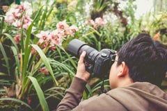 L'uomo asiatico che prende a foto la bella orchidea fiorisce in un hou dell'orchidea Fotografia Stock Libera da Diritti