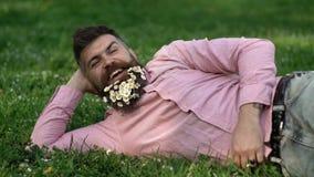 L'uomo barbuto con i fiori della margherita in barba mette sul prato, magra a disposizione, fondo dell'erba Uomo con la barba sul video d archivio