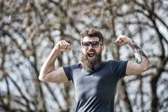 L'uomo barbuto mostra i muscoli, bicipite il giorno soleggiato Concetto di mascolinità L'uomo con la barba lunga sembra energetic immagine stock