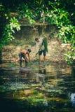 L'uomo cambogiano ed il ragazzo della gente raccolgono il fuco dell'alga del lago nel parco nazionale di Kep, Cambogia Fotografie Stock