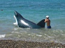 L'uomo cammina con gli squali di una mistificazione nell'acqua lungo la spiaggia in Soci Fotografia Stock Libera da Diritti