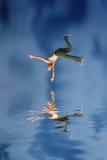 L'uomo che salta in acqua Fotografia Stock Libera da Diritti