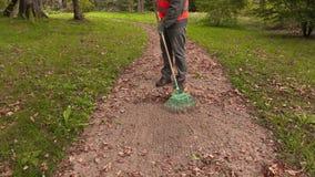 L'uomo con il rastrello raccoglie le foglie sul percorso in parco stock footage