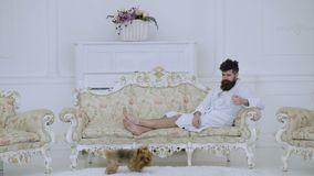 L'uomo con la barba ed i baffi gode della mattina mentre si siede sul sofà di lusso Concetto di svago dell'elite Uomo sul fronte  video d archivio