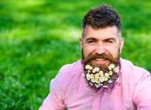 L'uomo con la barba sul fronte sorridente gode della vita senza allergia Concetto di allergia della primavera Pantaloni a vita ba Immagini Stock