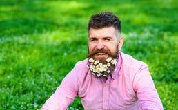 L'uomo con la barba sul fronte sorridente gode della vita senza allergia I pantaloni a vita bassa con le margherite sembrano feli Immagini Stock
