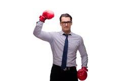 L'uomo d'affari aggressivo con i guantoni da pugile isolati su bianco fotografie stock