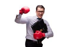 L'uomo d'affari aggressivo con i guantoni da pugile isolati su bianco immagine stock