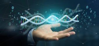 L'uomo d'affari che tiene i dati della rappresentazione 3d ha codificato il DNA con il file binario fi Fotografia Stock