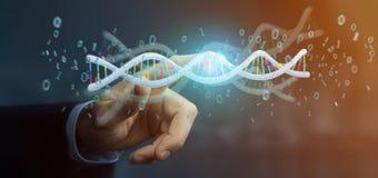 L'uomo d'affari che tiene i dati della rappresentazione 3d ha codificato il DNA con il file binario fi Fotografie Stock