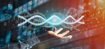 L'uomo d'affari che tiene i dati della rappresentazione 3d ha codificato il DNA con il file binario fi Fotografie Stock Libere da Diritti