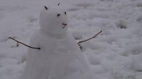 L'uomo della neve Fotografia Stock Libera da Diritti
