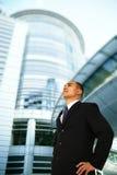 L'uomo di affari trascura la costruzione Immagini Stock Libere da Diritti