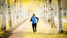 L'uomo di sport che corre all'aperto fuori dalla traccia della strada ha frantumato con gli alberi nell'ambito di bella luce sola Immagine Stock